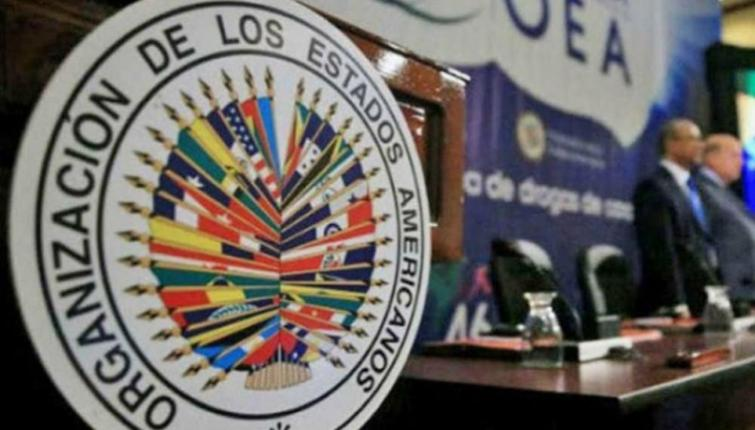 OAS identifies at least 10 deficiencies and inconsistencies in the prosecution's expertise