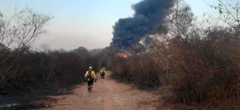 Santa Cruz: Fires affect 280,419 acres and nine communities are in distress