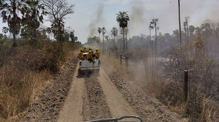 The government has given assurances that 95% of the fires in Santa Cruz have been controlled