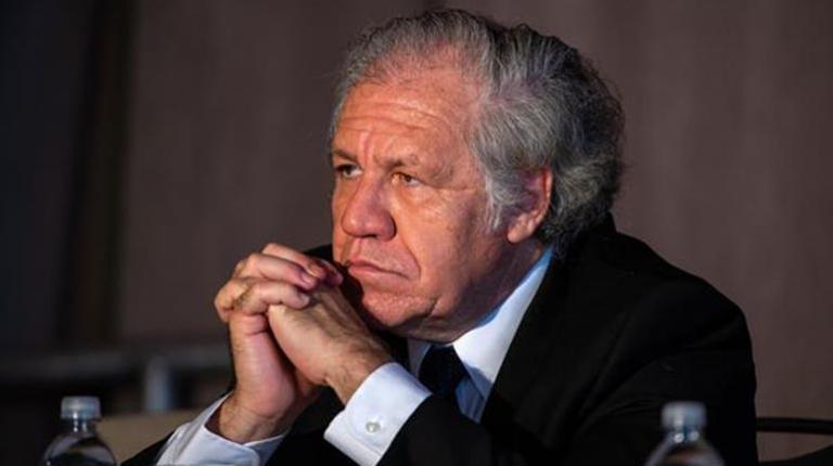 Almagro: Evo's government had seen signs of fraud since October 20th