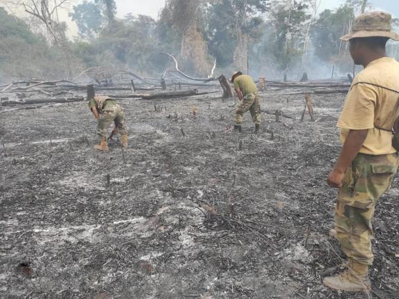 Forest fires devastate 1.4 million hectares in Bolivia