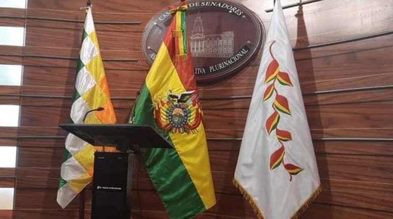 MAS presents a bill to recognize the Wiphala and Patujú as flags